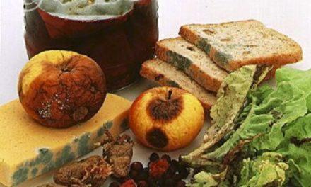 Prevenciones de intoxicaciones alimentarias en verano
