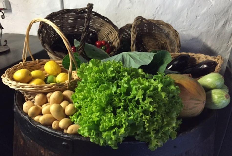 EL I FESTIVAL AUDIOVISUAL AGROECOLÓGICO SE CELEBRARÁ EN BREÑA ALTA