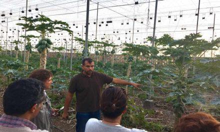 LOS AGRICULTORES GOMEROS CONOCEN LAS INNOVACIONES EN EL SECTOR AGROALIMENTARIO