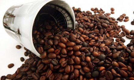 CAFÉ DE CALIDAD CON LOS MEJORES BARISTAS EN EL SALÓN DE GOURMETS