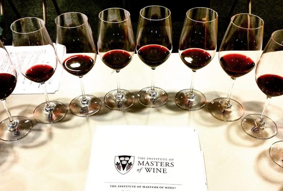 ONCE MASTERS OF WINE VISITAN CANARIAS