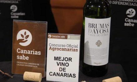 BRUMAS DE AYOSA BLANCO SECO, MEJOR VINO DE CANARIAS 2019