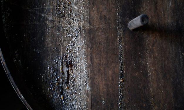 EL VINO DE TEA DE LA PALMA, OBJETO DE ESTUDIO DEL CONSEJO SUPERIOR DE INVESTIGACIONES CIENTÍFICAS